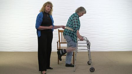 Exercise Prescription in the Home: Mobility
