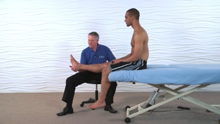 The Functional Manual Therapy<sup>®</sup> Approach to the Knee