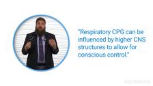 Respiratory Muscle Physiology