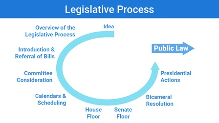 Rehabilitation Nursing and the Legislative Framework