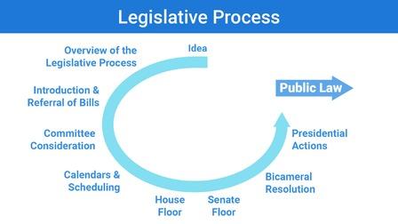 Rehabilitation Nursing and the Legislative Framework