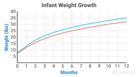 Growth and Development: Infancy Through Adolescence