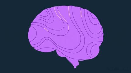Comprehensive Care for the Older Adult: Mild Dementia