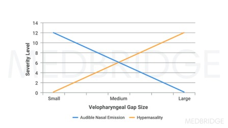 Evaluation of Speech/Resonance Disorders and Velopharyngeal Dysfunction