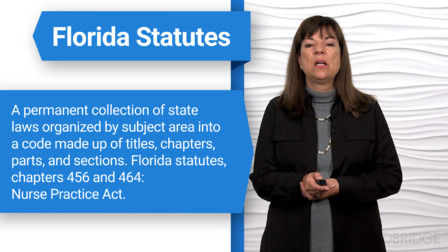 Florida Laws and Rules of the Board of Nursing