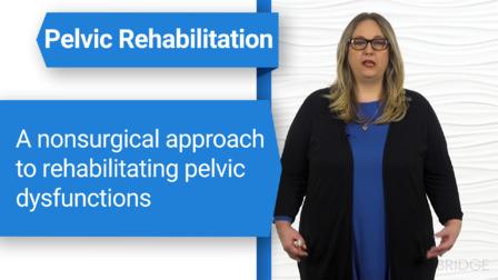 Treatment Strategies for the Pelvic Girdle and Pelvic Floor