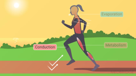 Exertional Heat Illness: Advanced Analysis of Extrinsic Risk Factors