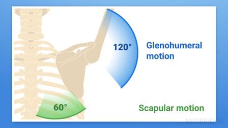 Hemiplegic Shoulder Part 1: Assessment