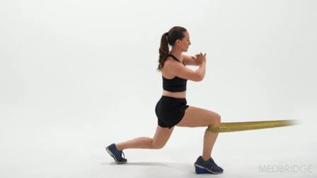 The Movement System: Assessment and Treatment of Knee Pain