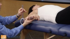 Regional Review of Musculoskeletal Systems: Shoulder and Upper Extremity