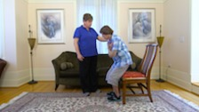An Overview of Critical Areas in Home Health