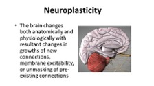 Neuroplasticity and Task Training