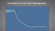 Sexuality Throughout the Lifecycle - Menopause