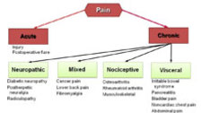 chronic pain management an insight into neuropathic pain Current pain management interventions are  insight into the molecular mechanisms of chronic pain conditions chronic inflammatory and neuropathic pain can lead to.
