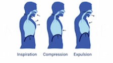 Cough and Other Reflexive Airway Defenses