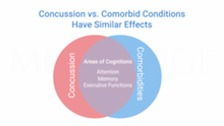 Complex Concussions and Cognition
