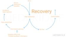 Pain Neuroscience Theory and Treatment Principles