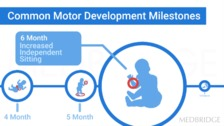 Motor Control and Reflex Development