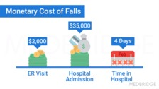 Falls Overview and the Role of Occupational Therapy
