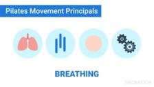 Pilates Principles and Rehabilitation Applications