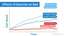 Effects of Exercise on the MS System