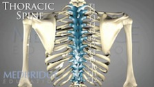 How Do We Treat the Thoracic Spine?