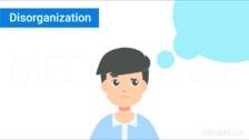 Disorganization and a Sensory Integrative Approach