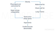 Pathology and Clinical Syndromes