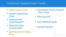 Psychiatric Home Care Nursing: Patient Assessment