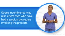 Stress Incontinence and Pelvic Organ Disorders