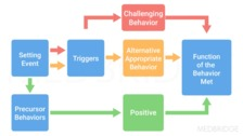 Positive Behavior Intervention and Supports: An Overview