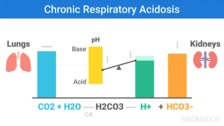 How CO2 Retention Happens and How It Alters Tissue Oxygenation