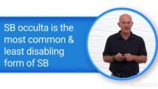 Introduction to Spina Bifida (SB)