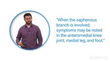 Anterior Nerve Entrapment Syndromes