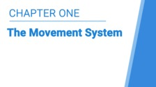 The Movement System