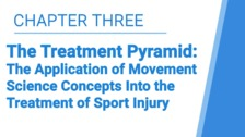 The Treatment Pyramid: The Application of Movement Science Concepts Into the Treatment of Sport Injury